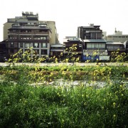 photo_film164