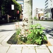 photo_film171