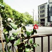 photo_film172