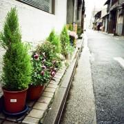 photo_film173