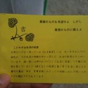 photo-3_2.jpg