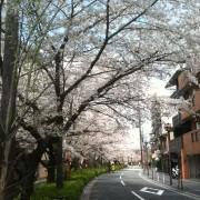 photo-2_2.jpg