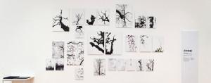 写真新世紀 大阪展 2013(アートコートギャラリー / 大阪)