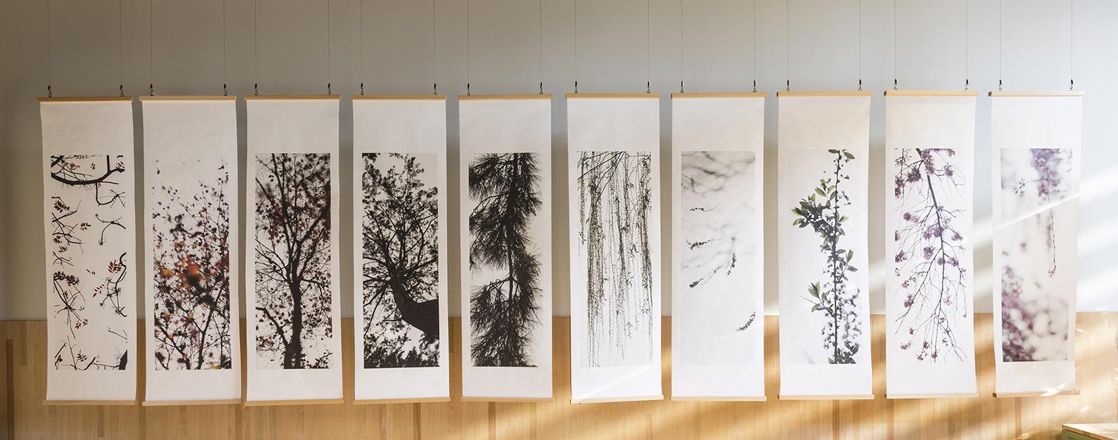 個展「樹々万葉(きぎのよろずは)」(新風館 / 京都)